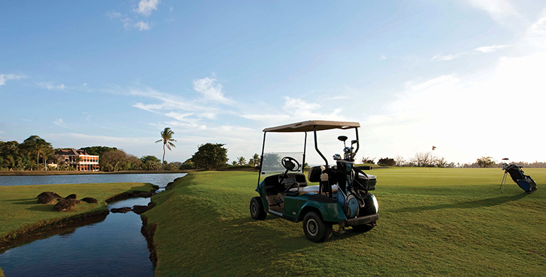 Golf cart and buggy