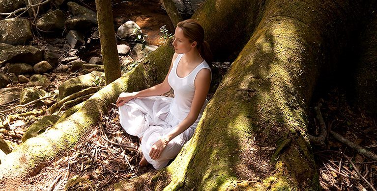 Forest bathing therapeutic experiences