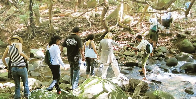 Wellness walk in the nature at Heritage Nature Reserve